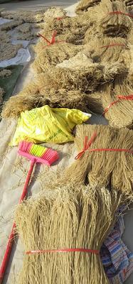 这是一张关于红薯粉 的产品图片