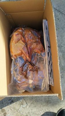 甘肃省甘南藏族自治州合作市藏鸡 2-3斤 母