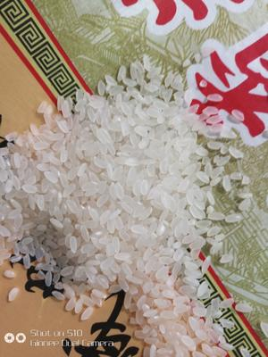 黑龙江省鸡西市鸡东县长粒香大米 一等品 一季稻 粳米