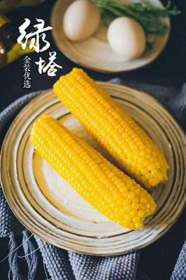 辽宁省沈阳市铁西区甜玉米 去壳 甜糯