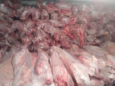 山东省菏泽市牡丹区羊肉类 生肉