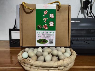 河北省石家庄市行唐县桂花雀蛋 食用 礼盒装