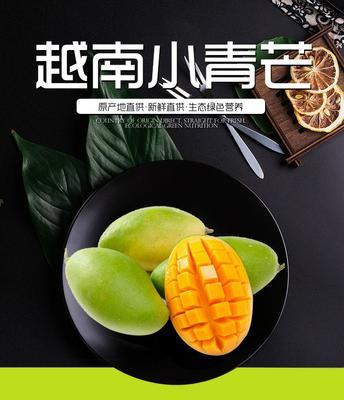 广西壮族自治区南宁市上林县越南青芒 6两以上 越南 芒果 甜心芒果