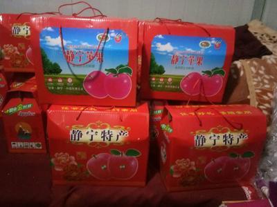 甘肃省平凉市静宁县静宁苹果  70mm以上 条红 纸袋 香,甜,口感好