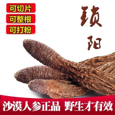 安徽省亳州市谯城区锁阳 散装 全根 干燥