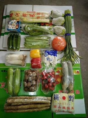 山东省潍坊市寿光市红南瓜  15斤以上 套菜,套菜