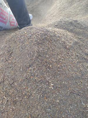 山西省忻州市五台县沙棘籽粕