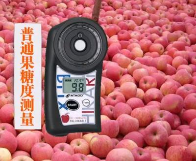 山东省烟台市栖霞市红富士苹果 90mm以上 条红 纸+膜袋