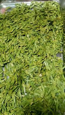 贵州省黔西南布依族苗族自治州晴隆县龙井茶 一级 散装