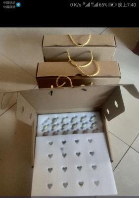 山东省济宁市市中区芦丁蛋 孵化 礼盒装