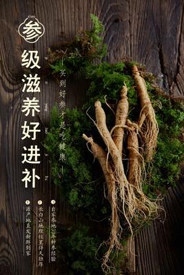 吉林省白山市靖宇县长白山人参 鲜参 单只14-20克