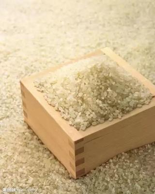 陕西省西安市碑林区籼米 一等品 晚稻 籼米