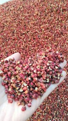 陕西省铜川市耀州区大红袍花椒 一级 干花椒