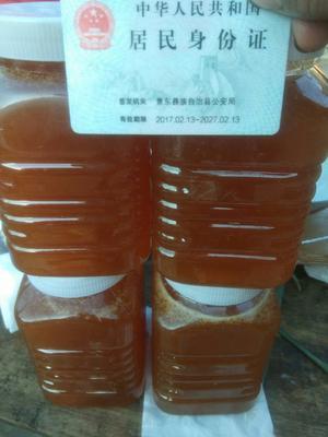 云南省普洱市景东彝族自治县土蜂蜜 塑料瓶装 2年 100%