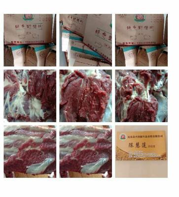 甘肃省张掖市民乐县野猪肉 生肉
