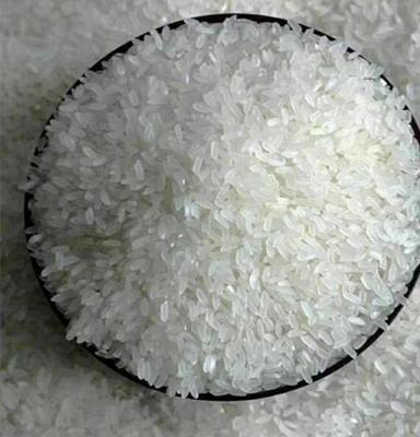 黑龙江省哈尔滨市双城市稻花香二号大米 一等品 晚稻 籼米