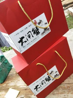 江苏省盐城市阜宁县盐城生态大闸蟹 公蟹 2.5两
