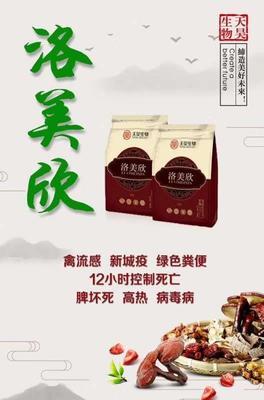 山东省潍坊市奎文区白鹅 10-12斤 统货 全圈养