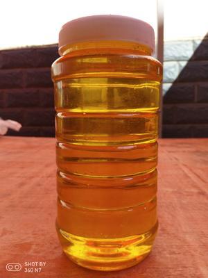 云南省保山市隆阳区云南冬蜂蜜 塑料瓶装 2年以上 100%