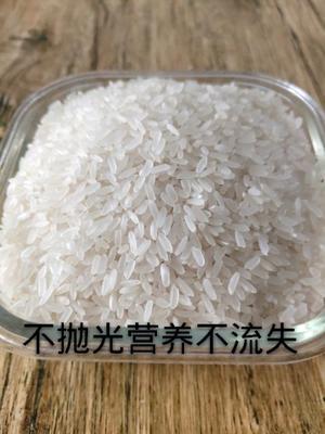 吉林省延边朝鲜族自治州珲春市东北大米 一等品 一季稻 粳米