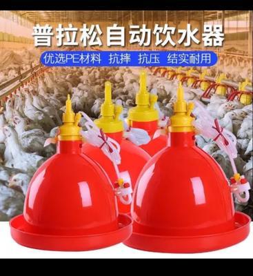 江苏省盐城市亭湖区鸡饮水器