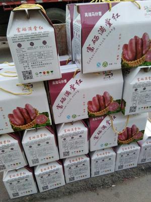 山东省枣庄市滕州市红土豆 2两以上