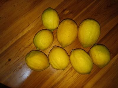 广东省茂名市信宜市香水柠檬 2.7 - 3.2两
