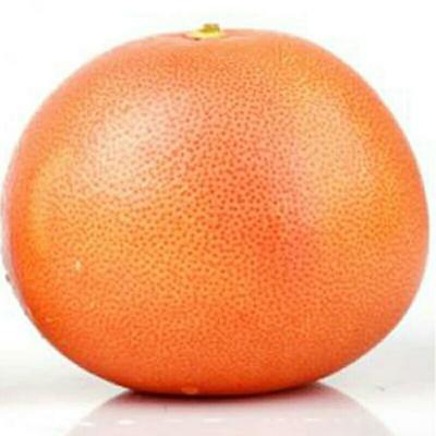 上海长宁区红心柚 1斤以上