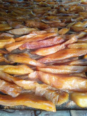 山东省临沂市河东区红薯干 半年 条状 袋装