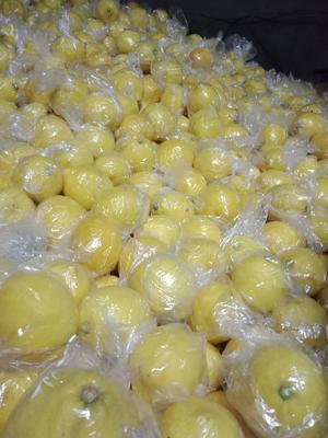 这是一张关于安岳柠檬 2.7 - 3.2两 的产品图片