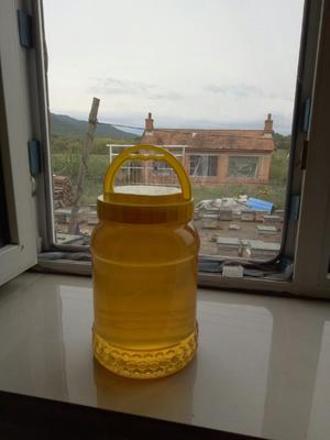 吉林省吉林市舒兰市椴树蜜 塑料瓶装 2年以上 98%