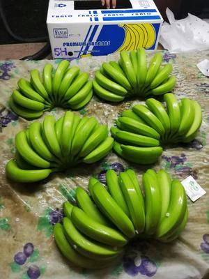 上海浦东新区菲律宾香蕉 七成熟