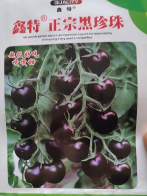 这是一张关于樱桃番茄种子 ≥96% 杂交种 ≥85% 的产品图片