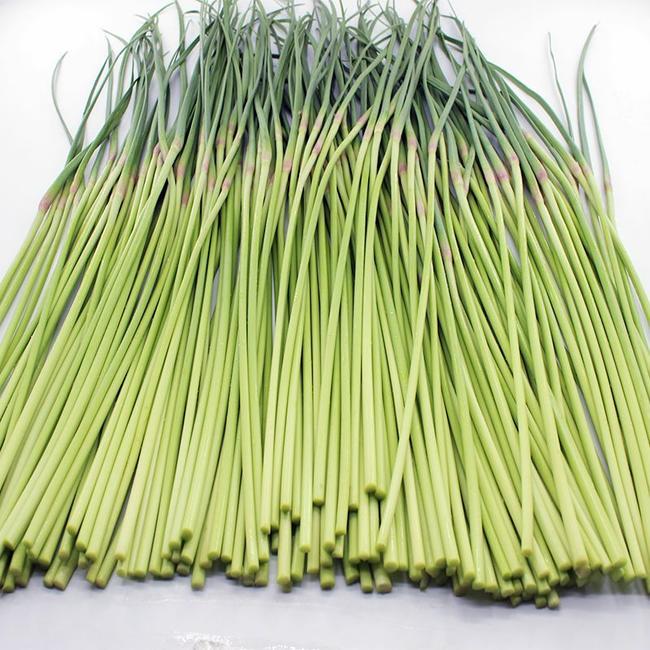 保鲜蒜苔 30~40cm  约5.0斤/箱