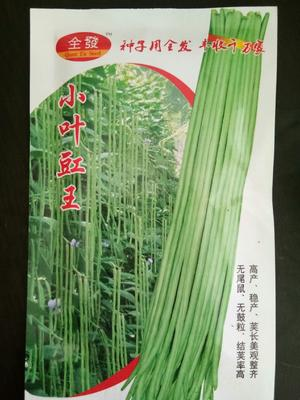 这是一张关于白皮豆角种子 ≥85% 的产品图片