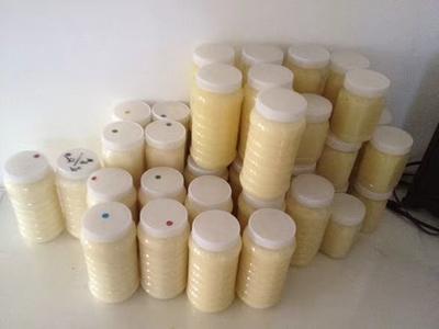 贵州省遵义市遵义县土蜂蜜塑料瓶装 2年 100%