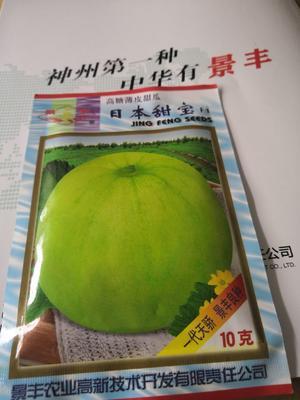 河南省南阳市卧龙区日本甜宝甜瓜种子 杂交种 ≥95%