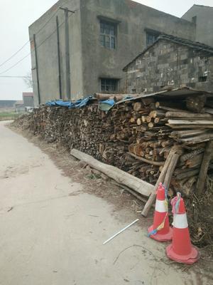 湖北省荆州市江陵县干杂木