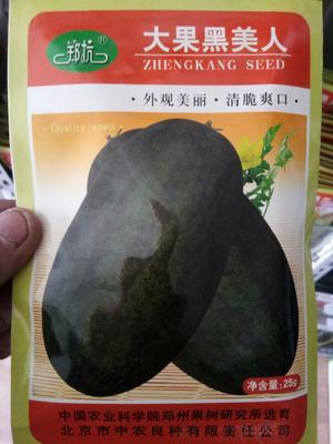 河南省郑州市金水区黑美人西瓜种子 二倍体杂交种 ≥85%