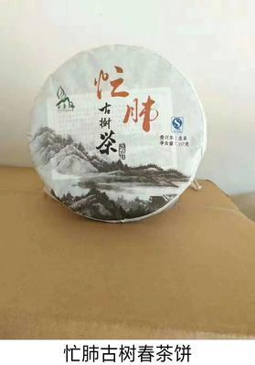云南省临沧市永德县古树普洱茶 特级 散装 忙肺古树春茶饼