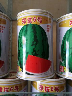 河南省郑州市金水区京欣西瓜种子 二倍体杂交种 ≥85%