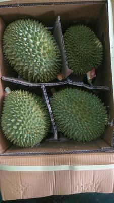 广西壮族自治区崇左市凭祥市猫山王榴莲 3 - 4公斤 90%以上