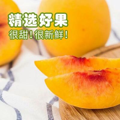 湖南省怀化市麻阳苗族自治县麻阳黄桃 70mm以上 4两以上