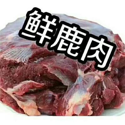 吉林省长春市双阳区鲜虾仁  梅花鹿肉