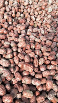 新疆维吾尔自治区喀什地区麦盖提县灰枣 统货