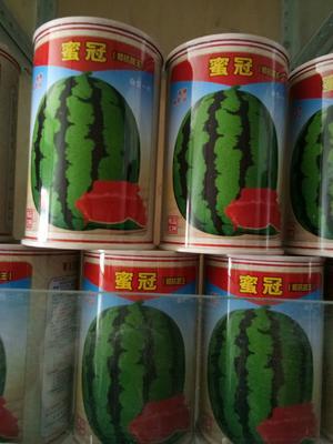 河南省郑州市金水区甜王西瓜种子 二倍体杂交种 ≥85%