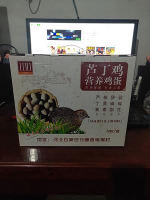 河北省石家庄市行唐县芦丁蛋 食用 礼盒装