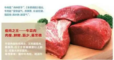 江西省九江市永修县牛肉类 生肉