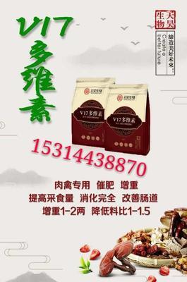 山东省潍坊市奎文区肉牛 400-600斤 统货