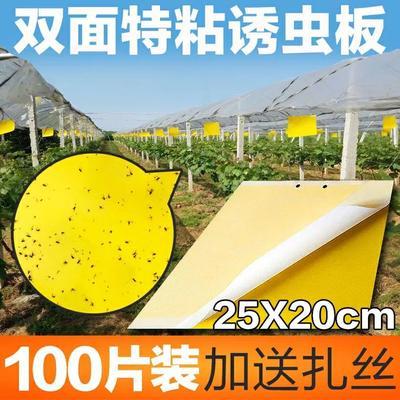 山东省潍坊市寿光市诱虫板  双面加厚粘虫板进口胶